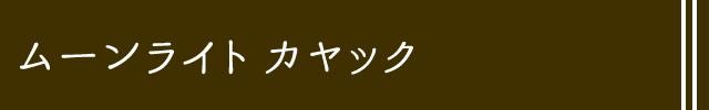 石垣島ムーンライトシーカヤック